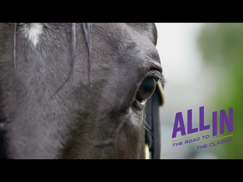 OFFICIAL TRAILER | ALL IN: The Road to the Classic | Season 2