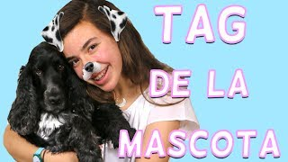 TAG de la mascota | Kitty Sweety