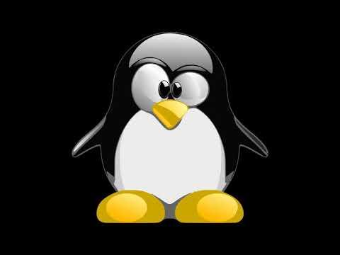 Lagu Senam Pinguin Download