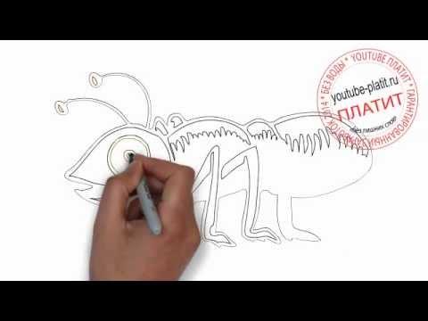 Видео как нарисовать кимоно карандашом поэтапно