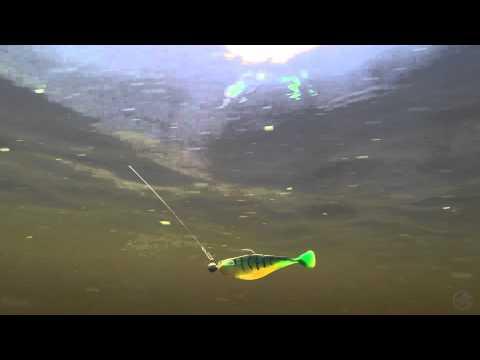 Offshore Angler Baitfish Bode 4''
