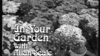 In Your Garden With Allan Seale -  1983