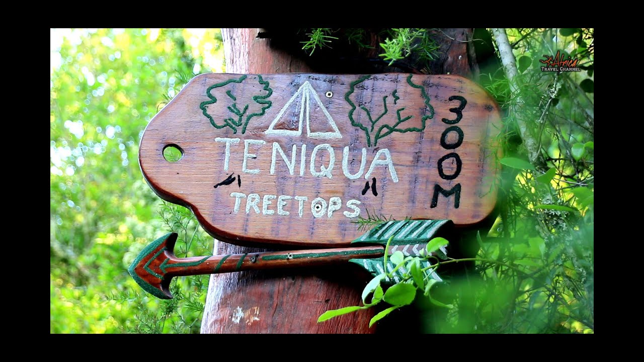 Teniqua TreeTops - Accommodation Knysna - Africa Travel Channel
