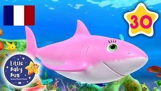 Bébé Requin   Comptines et Chansons Pour les Bébés   Little Baby Bum en Français