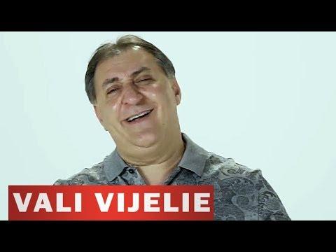 Sonerie telefon » VALI VIJELIE – Fetele din Romania (Audio 2012)