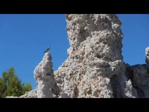 Mono Lake Tufa State Natural Reserve - South Tufa Area