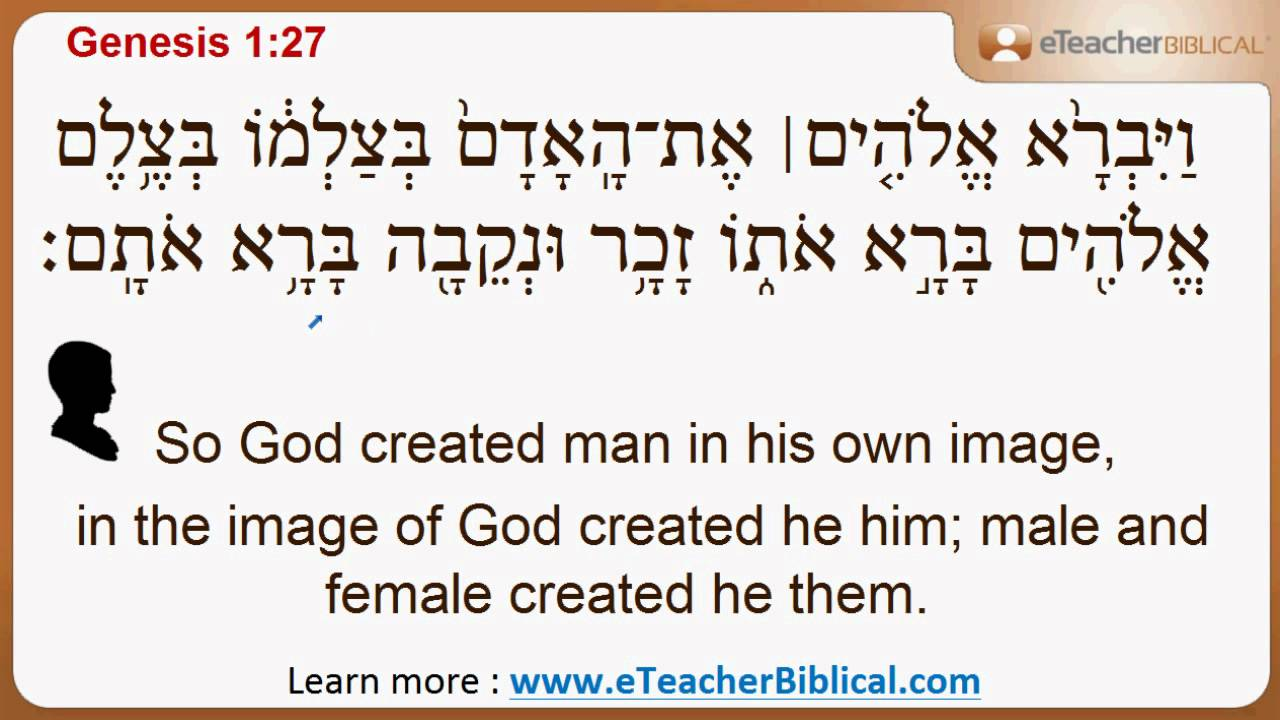 why did god say quotlet us make man in our imagequot biblical