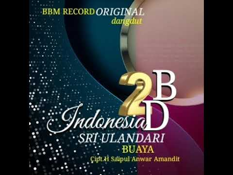 Download 2BD INDONESIA SRI ULANDARI BUAYA COVER SINGLE Mp4 baru