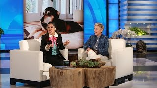 Salma Hayek's Dog Loves Cake!