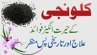 Download Kalonji Seed Benefits, Ilaj aur Fawaid in Urdu Hindi - Health Tips 3Gp Mp4