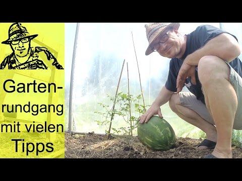 Gartenrundgang im Juni 2016 mit vielen praktischen Tipps