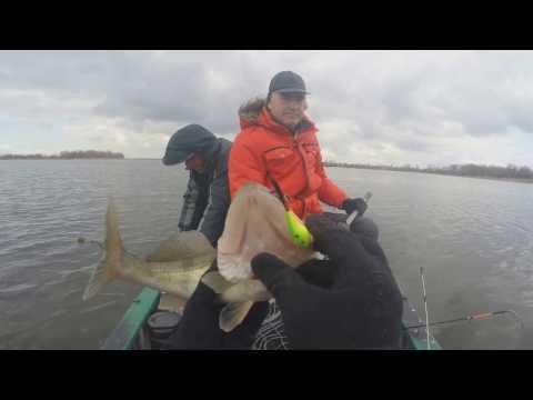 рыбалка на судака в киеве