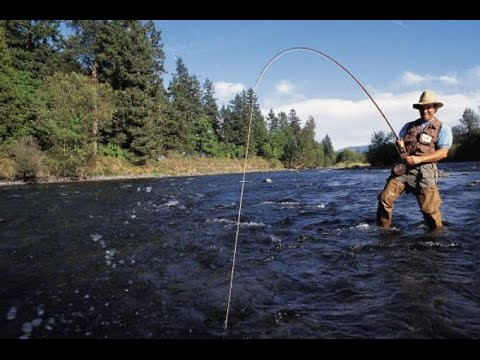 бдо рыболовная сеть