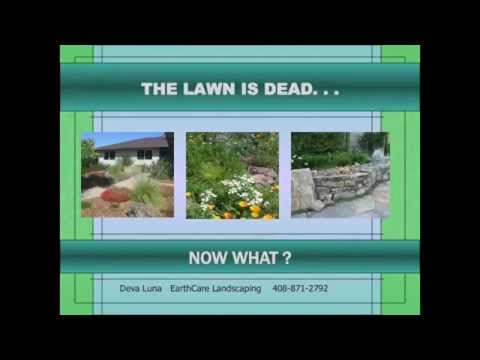 The Lawn is Dead, Now What?