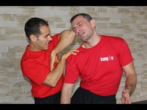 1st Wing Chun BiuTze Chi Sao Section Image 1