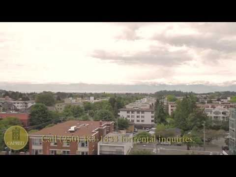 Victoria Apartments for Rent Video - 1039 View St