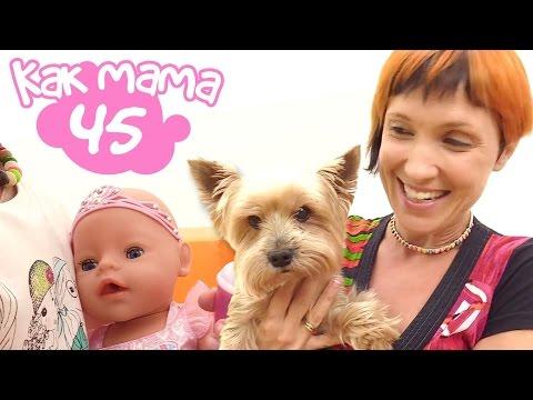 Как Мама серия 45. Эмили гуляет с подружкой и Чихуахуа