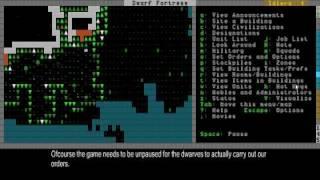 Dwarf Fortress Video Tutorial