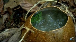 DIY Survival: Brewing Tea in the Jungle | Dual Survival