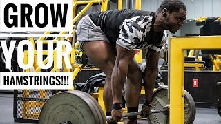 Complete Hamstring Workout For Bigger Stronger Hamstings | Raw Gym Footage