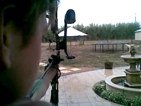 PSE Stinger Compound Bow 20m Shooting