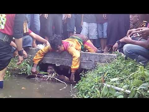 Rogo Samboyo Putro Live Pojok Tanjung Kalang
