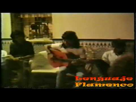 Guitarra Flamenca - Raimundo Bulerias Diego del Gastor