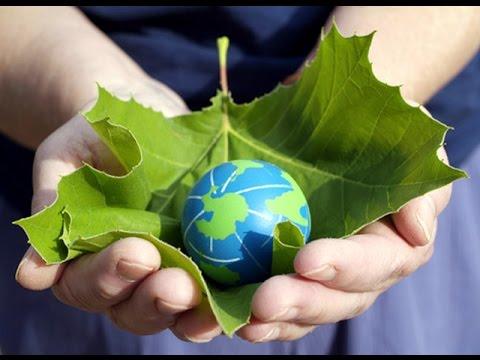 Debate on World Environment Day !!!