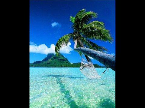 Beach Boys - Island Fever