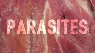 Watch Ugly Casanova Parasites video