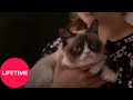 Grumpy Cat's Worst Christmas Ever | Lifetime