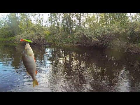 рыбалка на реке ямсовей