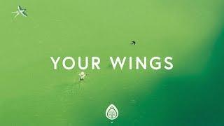 Download Lagu Lauren Daigle ~ Your Wings (Lyrics) Gratis STAFABAND