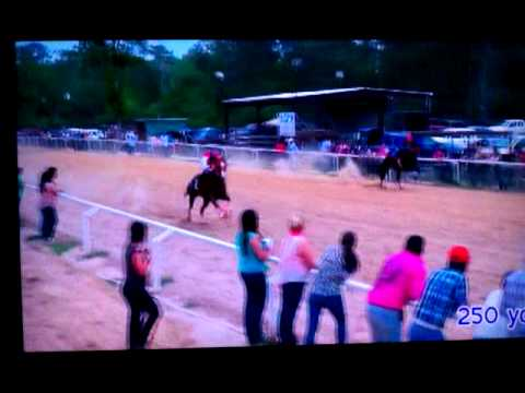 Carreras de caballos new caney tx 4/14/13
