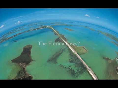 Gulf Oil Spill Disaster