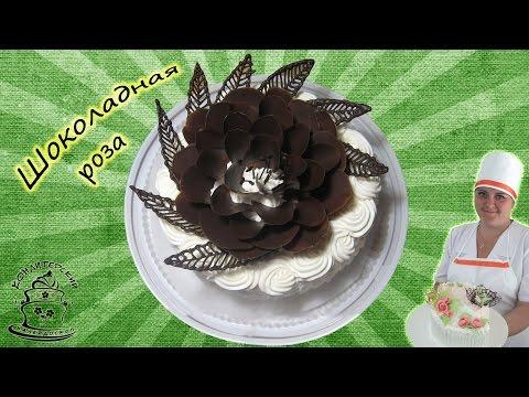 Как сделать фото из шоколада на торт