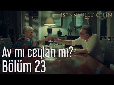İstanbullu Gelin 23. Bölüm - Av mı Ceylan mı?