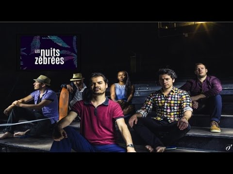 The Bongo Hop - Live NUITS ZEBREES - Radio Nova [Official Audio]