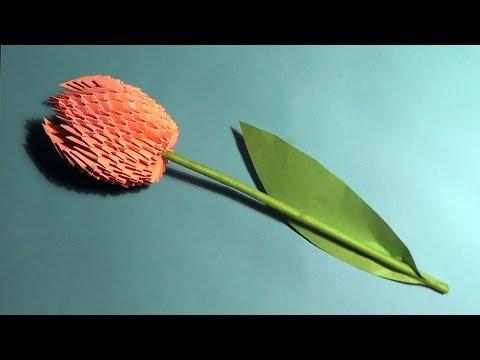 Модульное оригами тюльпан