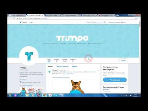 Trimpo - быстрые онлайн продажи на мировом рынке