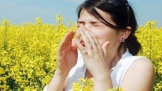 Почему все больше горожан страдает от сенной лихорадки?