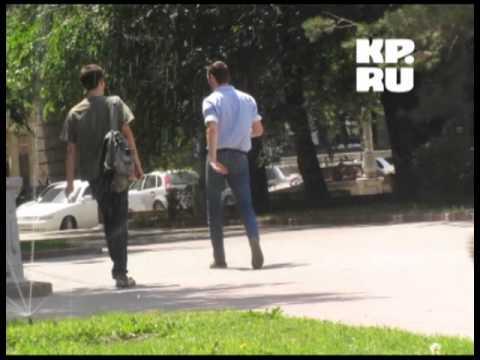 Волгоград атакует мошкара