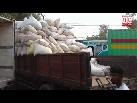 truckloads of paddy |eng