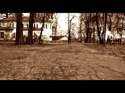 Vienas Kumštis (2010)