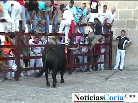 El toro del día 24 San Juan Coria 2011