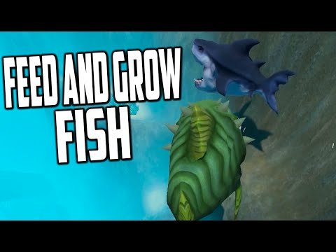 Feed And Grow Fish - ULTIMATE STARTER FISH (Early Access Gameplay)