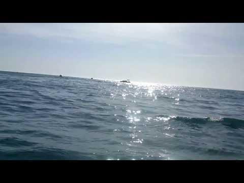 выход в море на рыбалку севастополе