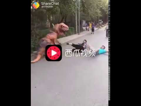 Funny videos 2018 People doing stupid things - Try ...., Funny Kids Fails Compilation 2018