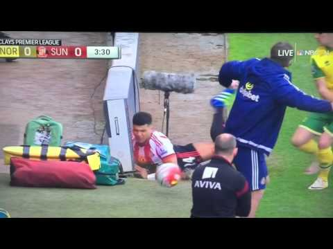 Sam Allardyce upset with Yedlin challenge
