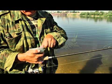 видео урок по ловле судака с берега